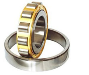 Fabrik-Lieferanten-Qualitäts-zylinderförmiges Rollenlager N214