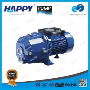 De diepe goed Self-Priming Straal Elektrische Pomp van het Water (JETDP)