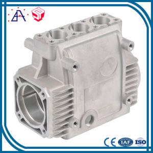 Good After-Sale Service Aluminium Die Cast Mould (SY0680)