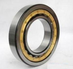 Roulement à rouleaux cylindriques en acier chromé, roulement à rouleaux NSK (NJ310EV)