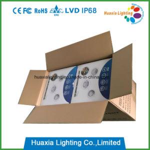 Indicatori luminosi sincronizzati della piscina del LED