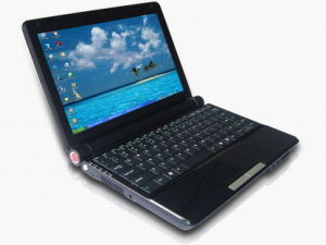 10.2&acute miniLaptop met 1.3mega Webcam 160G HDD WiFi (CPC1021)