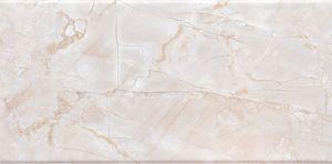 工場プロジェクトのための陶磁器の床タイルそして壁のタイル