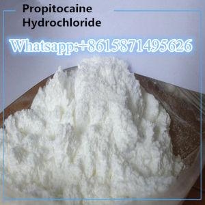 Lokale Anästhesie Propitocaine Hydrochlorid Propitocaine HCl-Puder 1786-81-8
