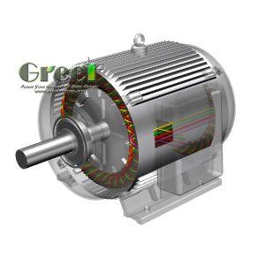 48V-1140V personalizzato, generatore a magnete permanente ad azionamento idraulico