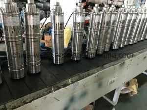 4qgd1.2-100-0.75 Bomba de Agua de Tornillo de acero inoxidable