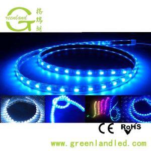 IP20 2 indicatore luminoso di striscia termoresistente della garanzia DC12V 5050 LED di anno