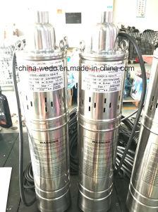 5qgd электрический водяной насос на полупогружном судне, а также насосы, водяной насос из нержавеющей стали