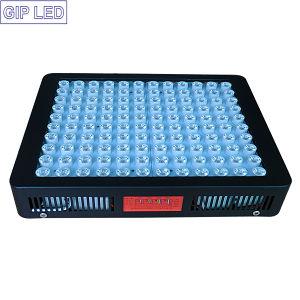 Chip de 5W Consumo de potencia 600 W de amplio espectro de luz LED crecer