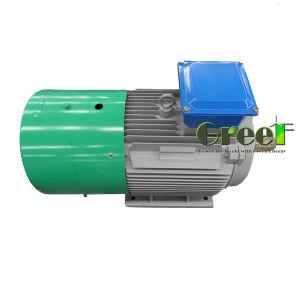 generatore a magnete permanente senza spazzola basso di alta efficienza di 220V 380V RPM