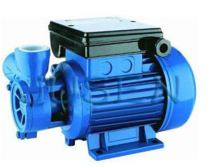0.5HP Home Using dB125 Electric Water Pump