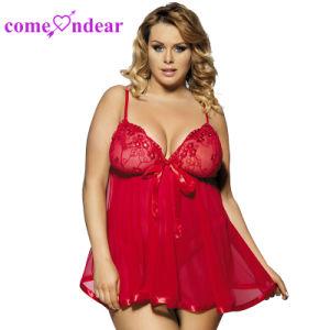 Fashion Mesdames Populaires Nouveaux arrivants de gros de lingerie sexy