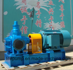 Aceite de alta calidad de la bomba de engranajes de transferencia
