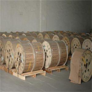 Collegare di alluminio placcato di rame del CCA del cavo del calcolatore in bobina di plastica