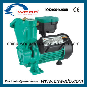 elektrische selbstansaugende Pumpe des Wasser-1awzb125K für inländischen Gebrauch