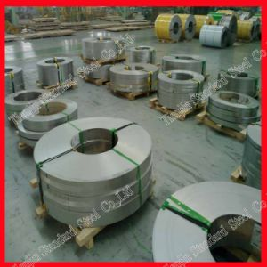 Piatto dell'acciaio inossidabile (304 316 316L 310S 321 430)