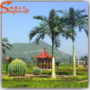 China Fornecedor ornamento Artificial Roystonea Regia Palmeira