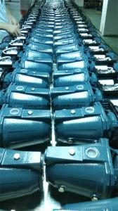 방글라데시를 위한 제트기 시리즈 1HP 각자 프라이밍 수도 펌프