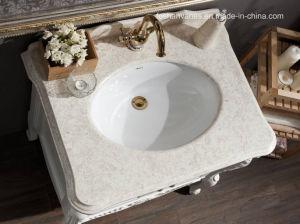 旧式で優雅な卸し売り木の浴室の虚栄心のキャビネットTc39115-8