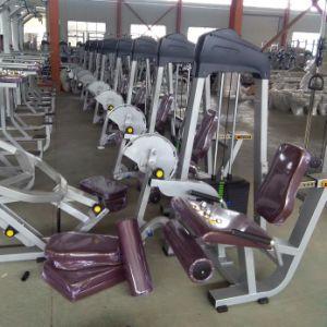 Macchina Hip di forma fisica della strumentazione commerciale di ginnastica di esercitazione del corpo multi