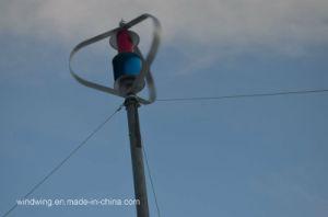 WegRasterfeld 1000W vertikaler Mittellinien-Wind-Turbine-Generator