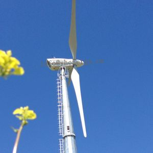 10kw turbina eólica (HAWT)