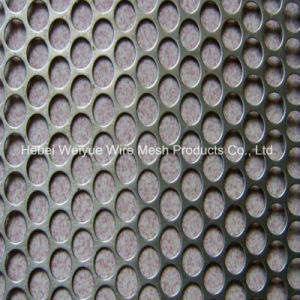 Stainless Steel Perforated Metal Sheet의 중국 Supplier