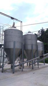 Hoja Hot-Galvanized Silo Alimentador de aves de corral para animales de granja de cerdos/ Equipo