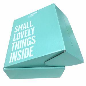 El papel de colores OEM caja de embalaje de cartón de tamaño personalizado para el envío de la zapata