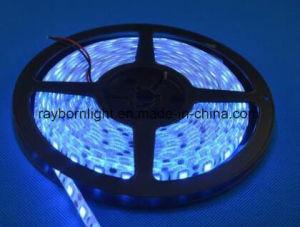 Indicatore luminoso di striscia impermeabile flessibile del regolatore a distanza IP68 SMD5050 RGB LED