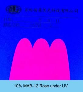 Shinlite mab-12 nam Fluorescent Pigment voor Silicone toe