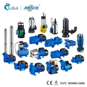 Anshi 1.5HP zentrifugale Wasser-Pumpe mit thermischem Schoner (2CP140H)