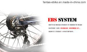 Fantas BMX Minischnee-elektrisches Fahrrad des Schiffsrumpf-36V250W 20inches