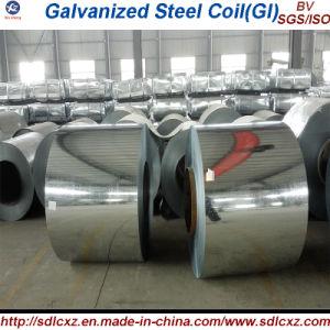 Il lustrino normale laminato a freddo la bobina d'acciaio galvanizzata