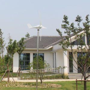 Type neuf 600W 12V/24V/48V générateur de turbine micro de vent de 3 phases pour la Chine à la maison
