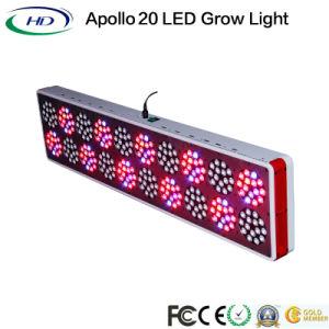 3W*300HP Full Spectrum Apollo 20 crescer a luz de LED