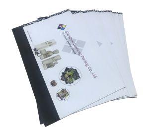 China Catálogo profissional de alta qualidade de impressão de brochura