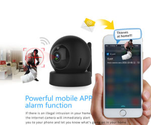 2megapixel HD Dome IRL Wireless PTZ WiFi Video IP Camera