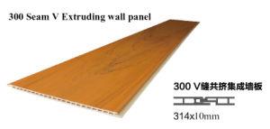 Écologique et imperméables en plastique en bois composite WPC panneaux muraux intérieurs (A172)