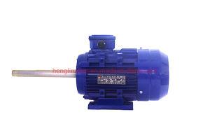 Ye eje extendido de la serie de tres fases de alta eficiencia eléctrica de CA/Motor de inducción eléctrica