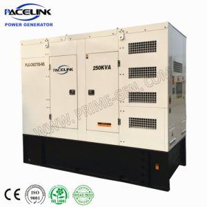 250kVA dreef het hoogst Aangepaste Type Cummins van Luifel Stille Diesel Generator met Beperkte Voetafdruk aan