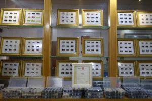 4 de vierkante Shell van de Kleur van de Rook van Gaten 18L Knopen van Trocas Shell van Knopen voor de Knoop van het Overhemd van het Polo