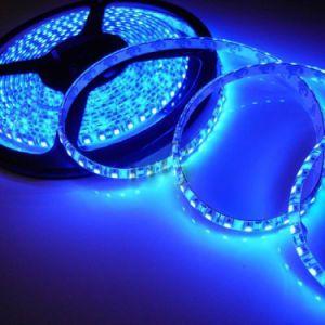 Striscia SMD 3528 120LEDs/M DC12V IP65 dell'indicatore luminoso di Flexbile LED impermeabile