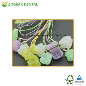 Ta039 Zogear Caja de dientes primarios
