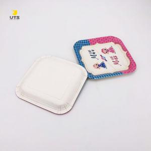 Biodegradable personalizados de papel grado alimenticio de las placas de alimentos
