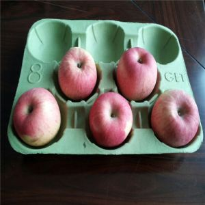 Todas as máquina automática de bandeja de maçã