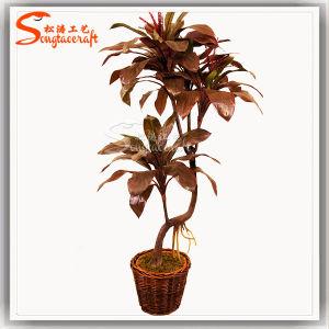 Alta qualidade de plástico artificial mini fábrica Bonsai Tree