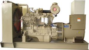 Gruppo elettrogeno diesel di Cummins (opzione della Perkins)