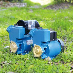 Qualitäts-Zusatzwasser-Pumpe inländisch (IDB)