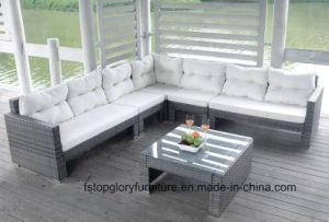 Neue Garten-Patio-Flechtweide/Rattan-Sofa-Möbel (TG-022)
